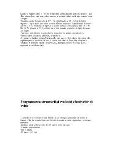 Elaborarea Proiectului Tehnologic pentru o Ferma de Productie de Ovine,Situata in Zona de Deal cu Capacitatea de 180 de Capete din Rasa Turcana,Varietatea Brumarie - Pagina 4
