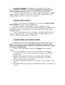 Drept Procesual Penal Curs 2 - Pagina 2