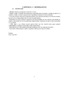 Raport de Evaluare - SC Alfa SA - Pagina 4