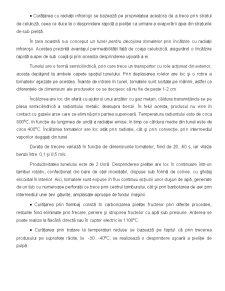 Tehnologia Conservelor - Pagina 3