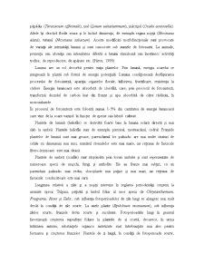 Influența Factorilor de Mediu asupra Organismelor Terestre - Pagina 5