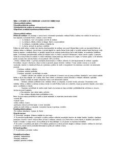 Creditare Bancara - Pagina 2