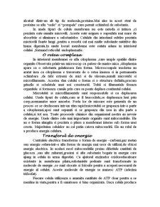 Celula - Pagina 3