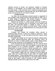 Celula - Pagina 4