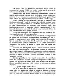 Celula - Pagina 5