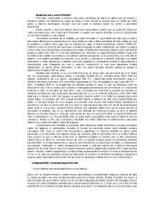 Arhitectura modelului OSI(ISO) - Pagina 3