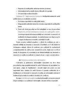 Audit Public - Capitolul 2 - Pagina 5