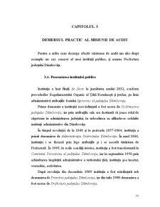 Audit Public - Capitolul 3 - Pagina 1