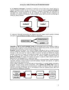 Analiza Cheltuielilor Întreprinderii - Pagina 2