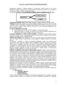 Analiza Cheltuielilor Întreprinderii - Pagina 3