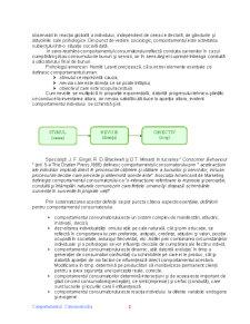 Comportamentul Consumatorului - Pagina 2