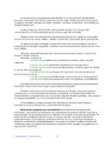 Comportamentul Consumatorului - Pagina 5
