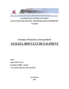 Analiza Riscului de Faliment - Pagina 1