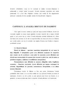 Analiza Riscului de Faliment - Pagina 5