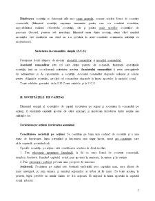 Formele Societăților Comerciale - Pagina 2
