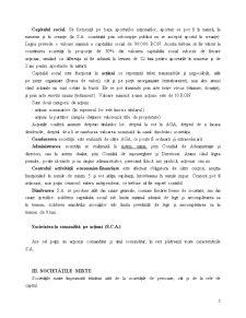 Formele Societăților Comerciale - Pagina 3