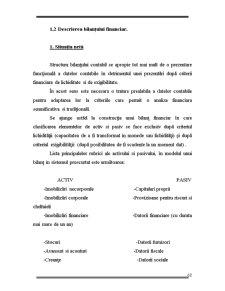 Creditul Bancar - Pagina 3