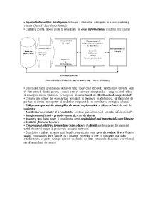 Produse și Servicii Bancare - Pagina 5
