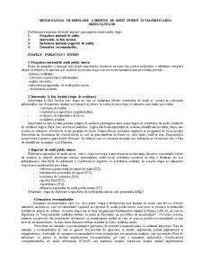 Metodologia de Derulare a Misiunii de Audit Intern și Valorificarea Rezultatelor - Pagina 3