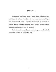 Mierea de Albine - Pagina 5
