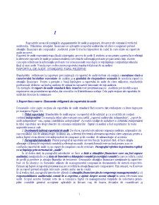 Audit Extern - Pagina 1