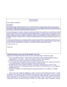 Audit Extern - Pagina 3
