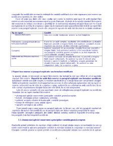 Audit Extern - Pagina 4