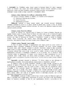 Managementul Proiectelor - Cadrul Logic - Pagina 5