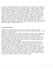 Metode Instrumentale de Analiza a Operelor de Arta - Pagina 5