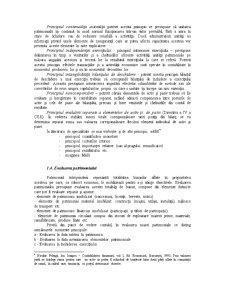 Organizarea Contabilității Financiare - Pagina 4