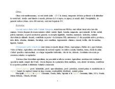Plan de Dezvoltare Rurala - Grecia - Pagina 4