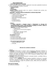 Contabilitatea ca Sistem Informațional - Pagina 5