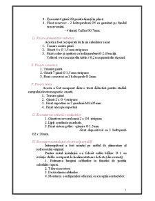Reglarea Automată a Nivelului - Pagina 5