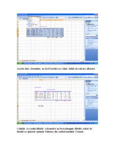 Proiect Bazele Informaticii - SC Hellena SRL - Pagina 5