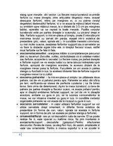 Pregatirea si Servirea Mesei, Arta Aranjarii Meselor - Pagina 4