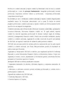 Expertiză Contabilă - Pagina 2