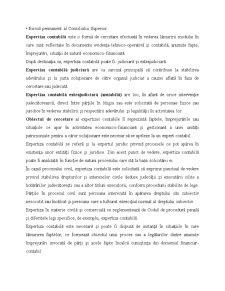 Expertiză Contabilă - Pagina 3