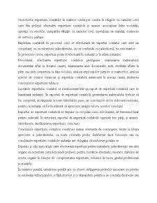 Expertiză Contabilă - Pagina 4