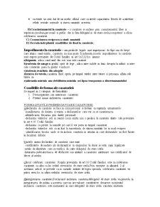 Dreptul Familiei - Pagina 2