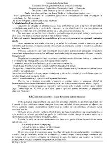 Expertiza Contabila 2 - Proba in Justitie - Pagina 4