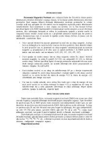 RMN - Pagina 1