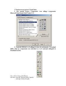 Totul despre Office si Visual Basic - Pagina 5