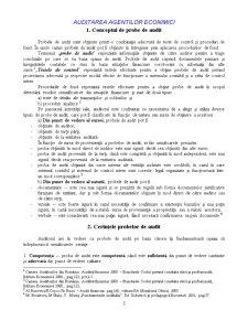 Probe de Audit - Pagina 3