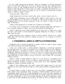 Drept International Public -1- - Pagina 2