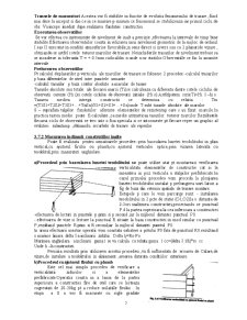 Topografie Inginereasca - Pagina 5