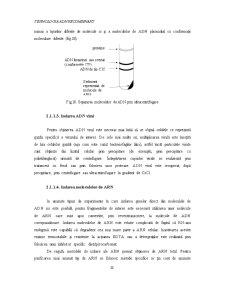 Inginerie Genetică - Pagina 4
