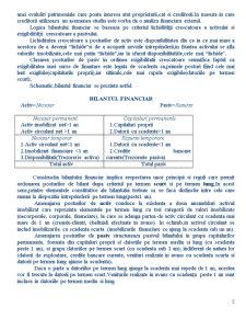Bilant si Indicatori Bilantieri - Pagina 2