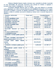 Bilant si Indicatori Bilantieri - Pagina 3