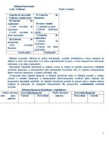 Bilant si Indicatori Bilantieri - Pagina 5