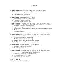 Contabilitate și Analiză economico-financiară - Pagina 2